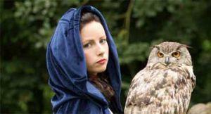 owlheader_01.jpg